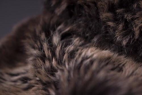 毛皮を持ち込み買取してもらおう!注意点や高額買取してもらえる方法をご紹介