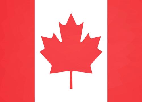 カナダコインの買取価値は?レアな種類や売る方法をご紹介