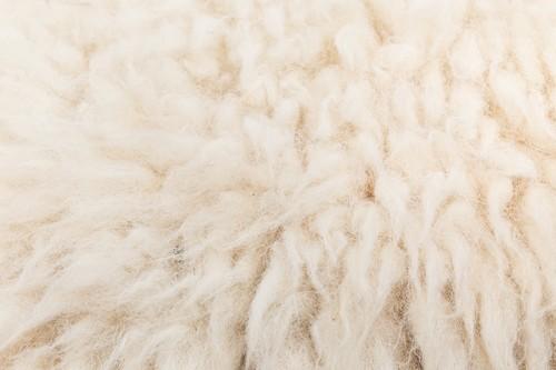 フワフワの優しい手触り、ラムの毛皮